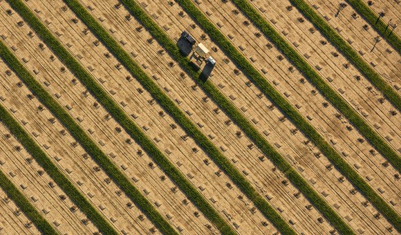 Vast fields, tiny workers, California. Aerial image (shot from a plane).